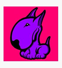Odie English Bull Terrier Purple  Photographic Print