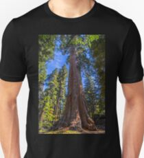 USA. California. Kings Canyon National Park. General Grant Giant Sequoia. Unisex T-Shirt
