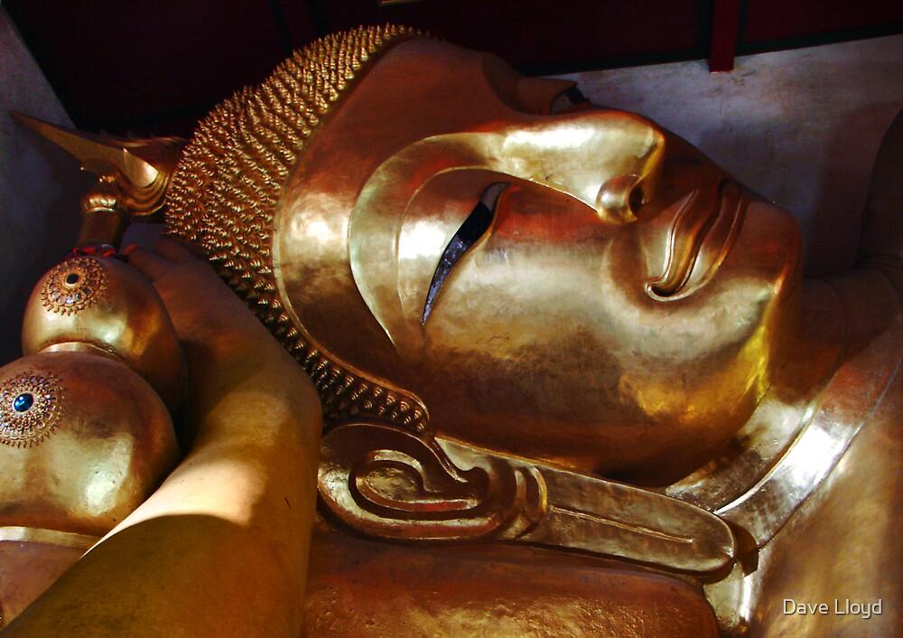 Golden Buddha by Dave Lloyd
