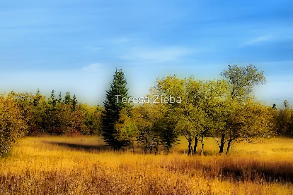 Autumn Colours IV by Teresa Zieba