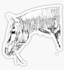 Quarter Horse Gelding IV Sticker