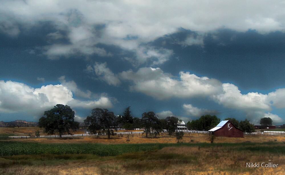 Farm  by Nikki Collier