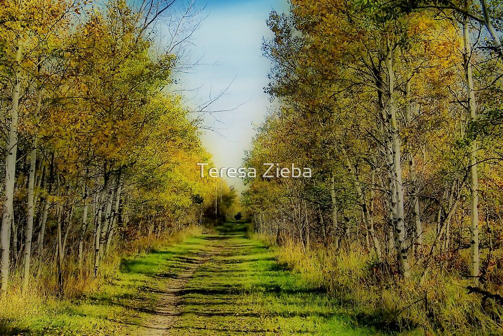 Autumn Colours VI by Teresa Zieba