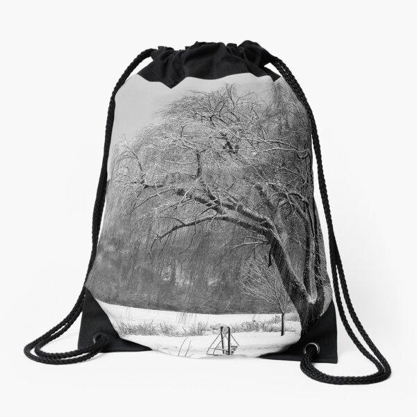 Willow Winter Drawstring Bag