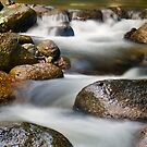 Smooth Flow by Steven  Siow