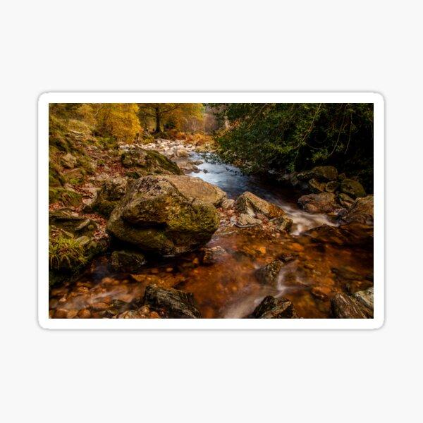 Wicklow Stream Sticker