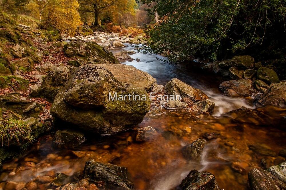 Wicklow Stream by Martina Fagan
