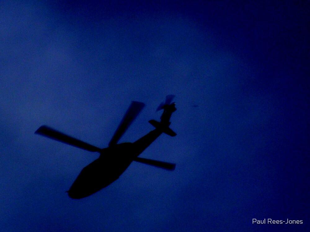 Shadow Flight. by Paul Rees-Jones