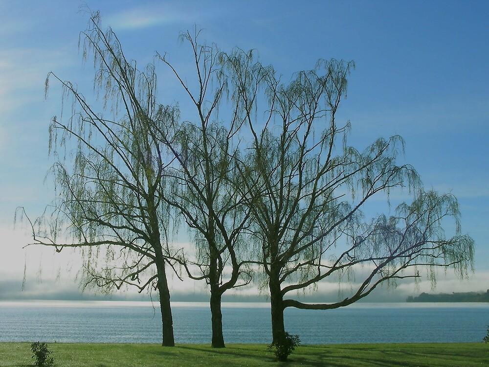 Orilla del Lago. by cieloverde