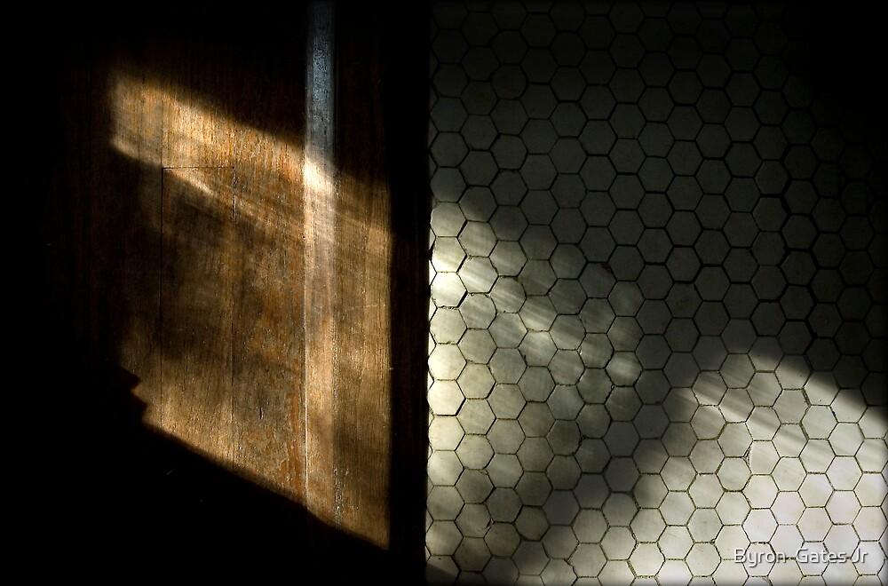 Untitled.00113 by Byron  Gates Jr