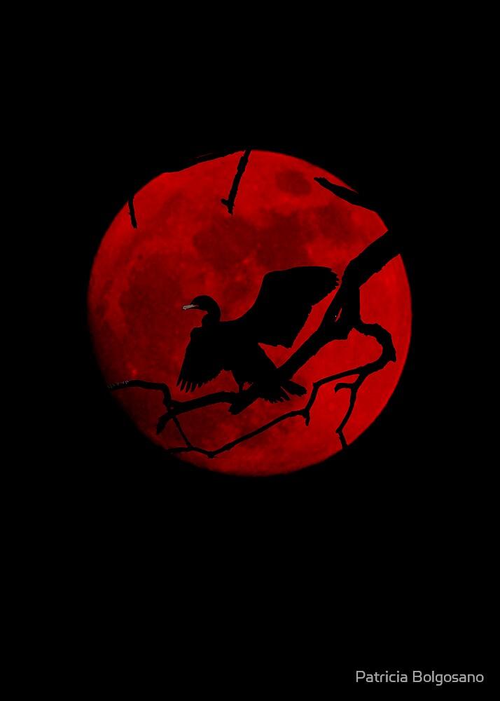 Halloween by Patricia Bolgosano