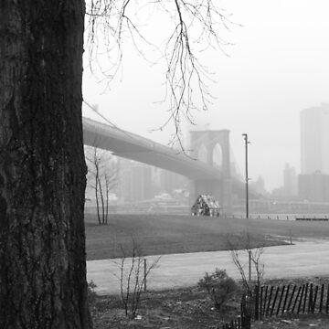 Un árbol crece en Brooklyn de ShootFirstNYC