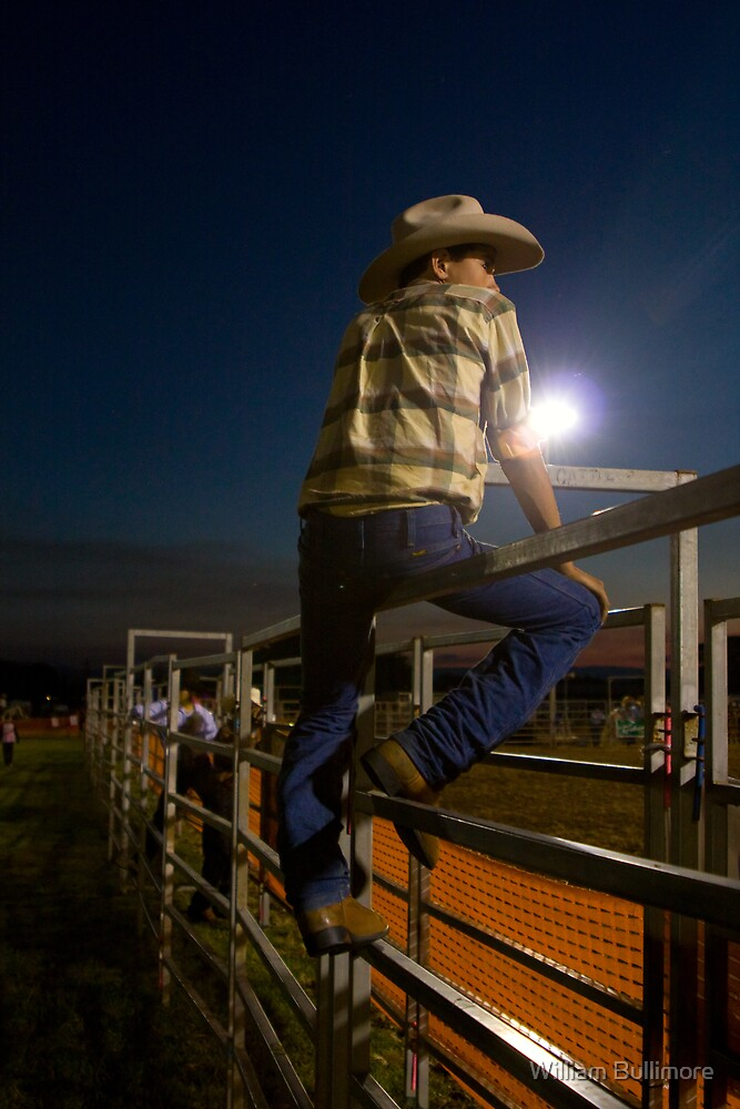 Fence Sitter • Ingham • Queensland by William Bullimore