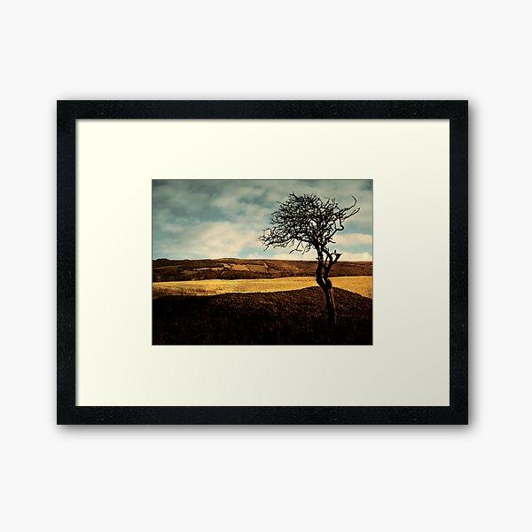 Moissonnerie . Framed Art Print