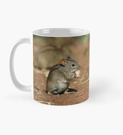 Striped Grass Mouse (Rhabdomys pumilio) Mug