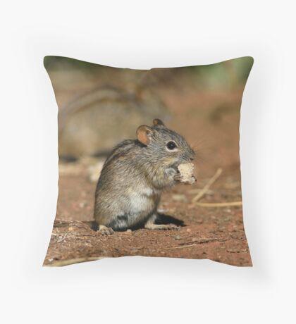 Striped Grass Mouse (Rhabdomys pumilio) Throw Pillow