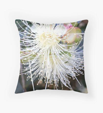 Starburst! Throw Pillow