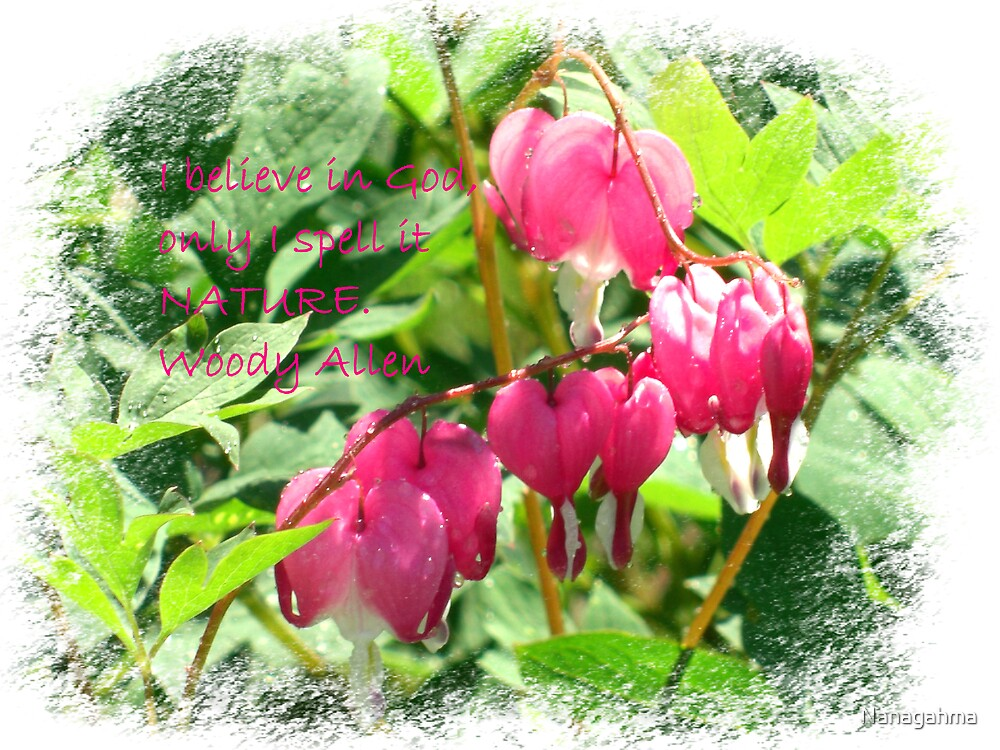 Bleeding Hearts with saying by Nanagahma