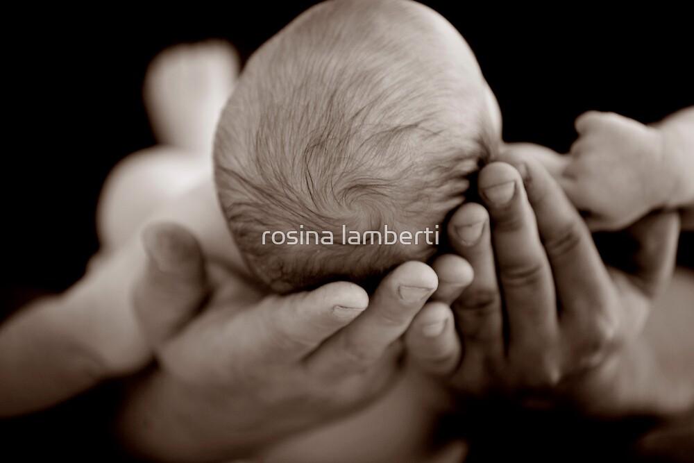 I'm in you hands by Rosina  Lamberti