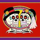 Los Novios (English) by Tammy Wetzel