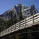 Terrace Trail  by Sean Jansen