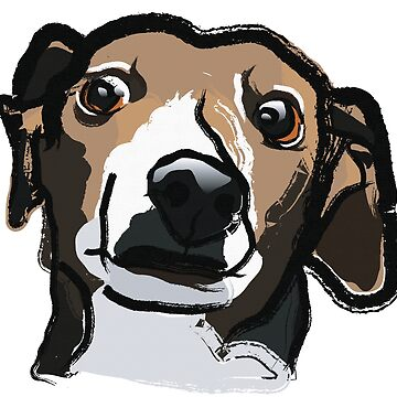 Italian Greyhound by lisa-richmond