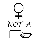I Am A Woman Not A Tag by C J Lewis