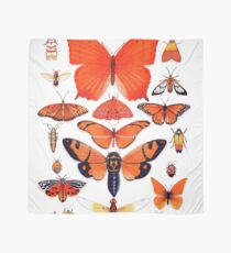 Orange Insect Collection Scarf