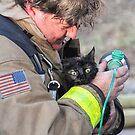 Fireman With A Heart Saves Dinah by Heather Friedman