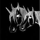 my unicorns by moonstone
