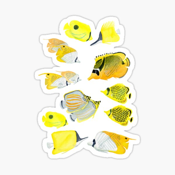 Butterflyfish of the tropical Pacific Sticker