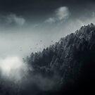 Misty Woodland by Dirk Wuestenhagen
