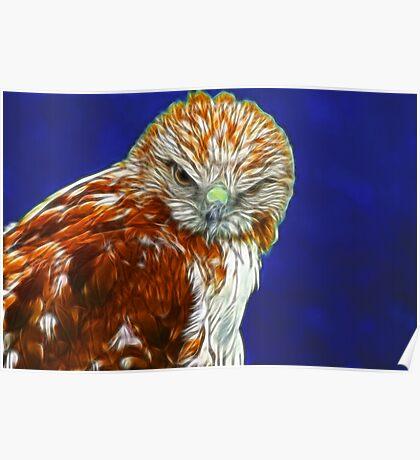 Falcon #1 Poster