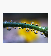 Droplet Lens Photographic Print