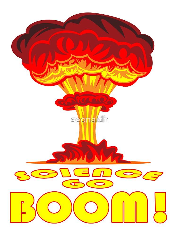 Science Go Boom! by seonaidh