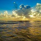 Morning Reflections by Kim Austin