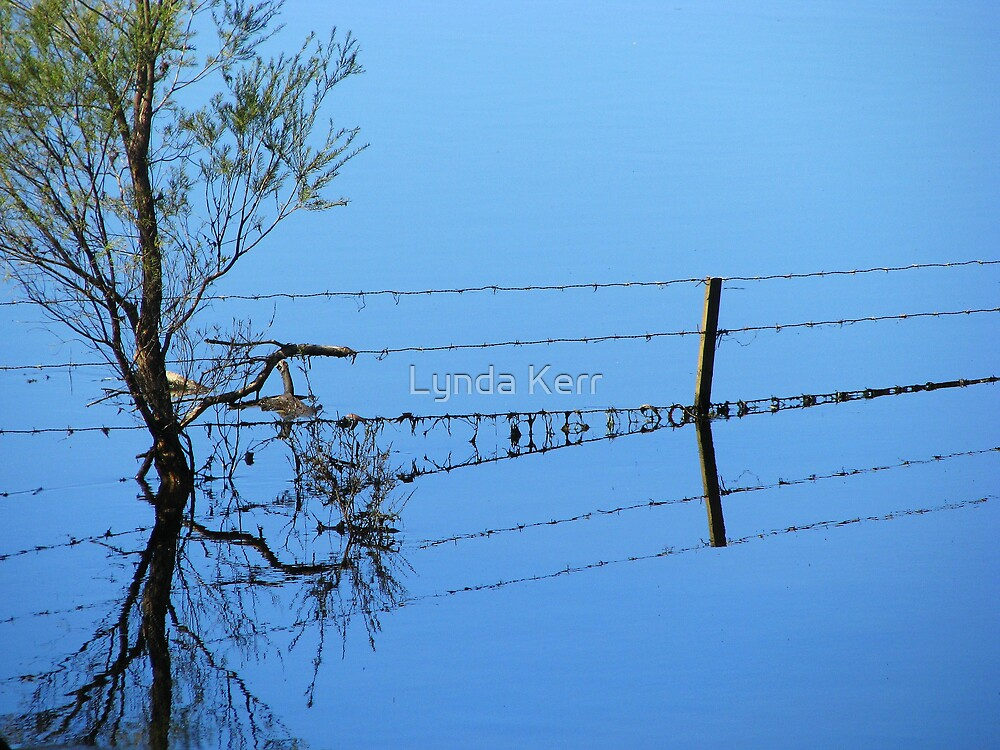 Fence Flow by Lynda Kerr