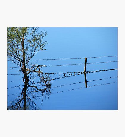 Fence Flow Photographic Print