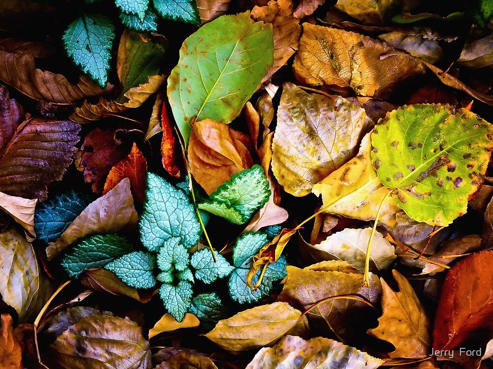 Autumn Blanket by Myron Watamaniuk