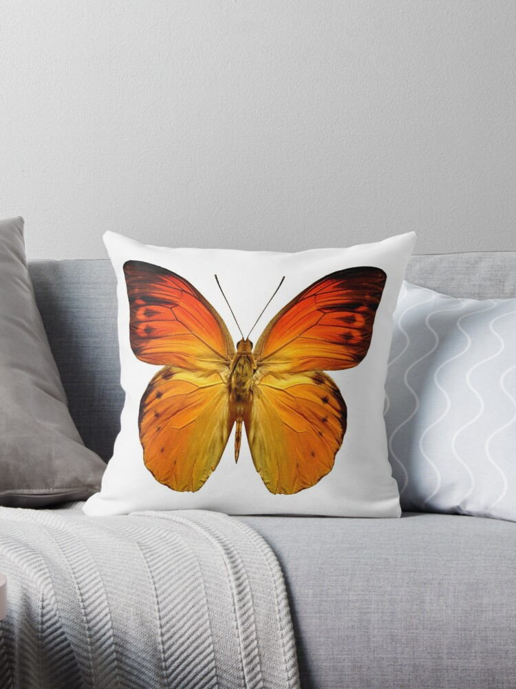 Beautiful Cushions/ Animals/ Butterfly Love by ozcushionstoo