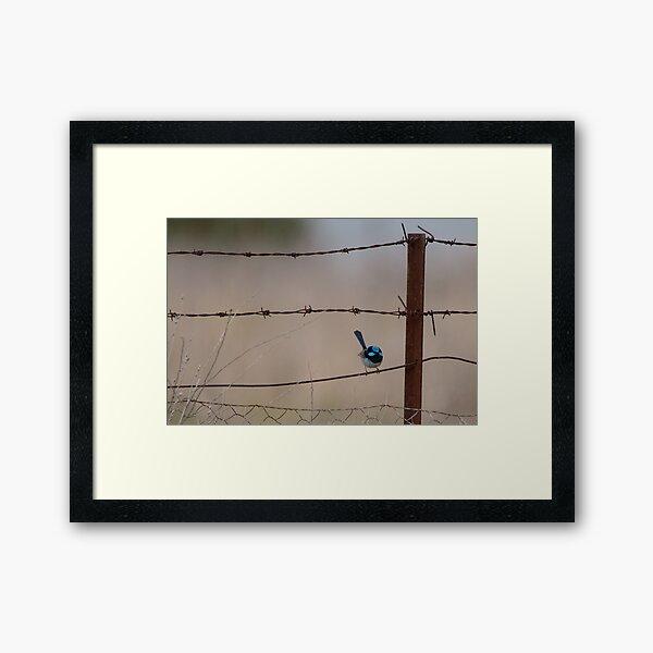 Bird on a Wire... Framed Art Print