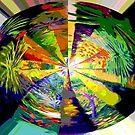 Kaleidoscope, below the rainforest. by Virginia McGowan