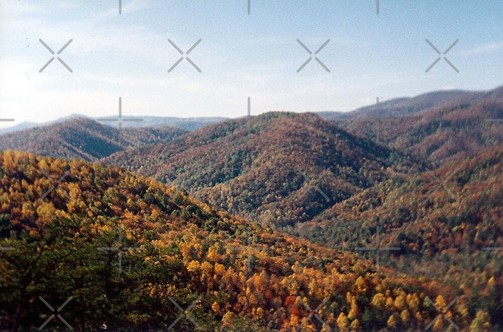 Stone Mountain Autumn by Sheila Simpson
