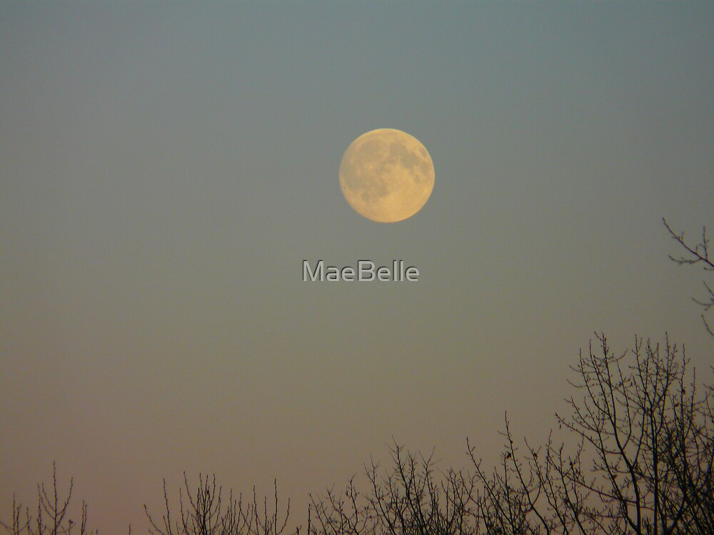 Evening Moonlight by MaeBelle