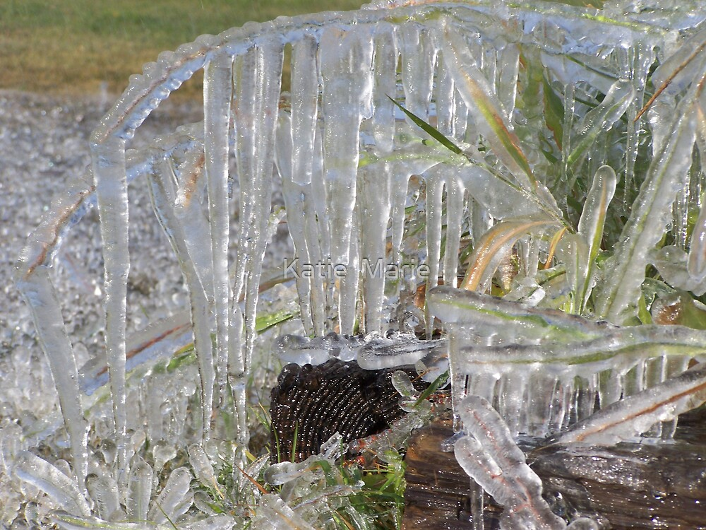 Ice Ice Ice..... by Katie  Marie