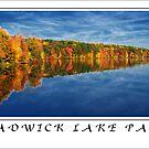 """Chadwick Lake Park"" by Jaime Hernandez"