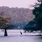 A Nice Autumn Day On the Lake by Cleburnus