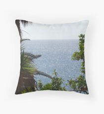 Natural Framing Throw Pillow
