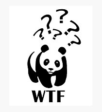 WTF Puzzled Panda Photographic Print