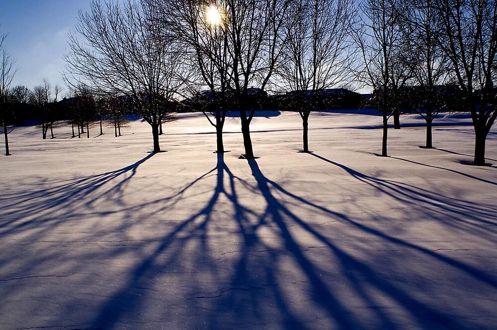 December Shadows by FireDzine